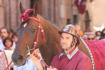 Siena, Italy, gears up for the Palio,
